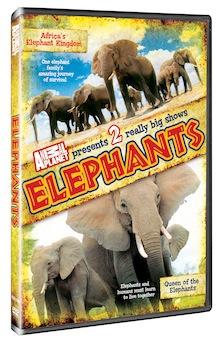 Elephants_boxart