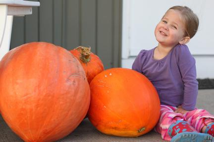 Zoe & her pumpkins