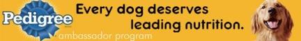 Pedigree Ambassador Campaign