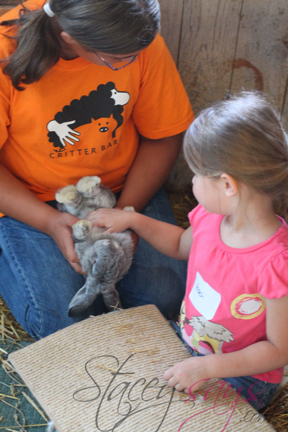 Critter Barn, Holland MI