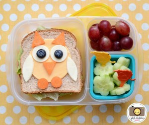 image source: http://www.meetthedubiens.com/2014/03/this-week-in-bento-boxes-21.html
